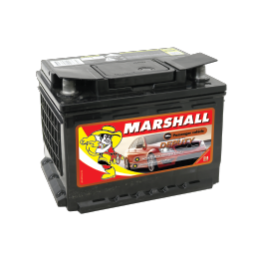Marshall_PV_Deputy-EN55MF